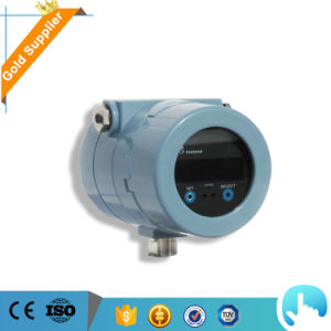 Coriolis Mass Flow Meter for LPG/CNG/LNG pictures & photos