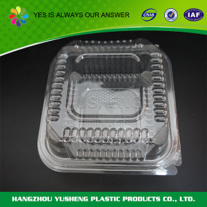Dispoasble Plastic 5 Compartments Display Microwave Safe Bento Food Container