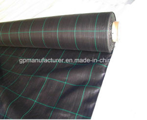 Black Woven Fabric Geotextile for Road Construction pictures & photos