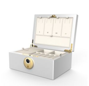 Biometrics Fingerprint Jewelry Safe Box & Organizer
