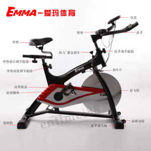 Exercise Bike (AM-S2000G) pictures & photos