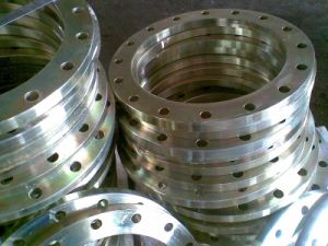 Super Duplex Stainless Steel Flanges, A182 F48 F51 F55 F53 Forged Flanges pictures & photos