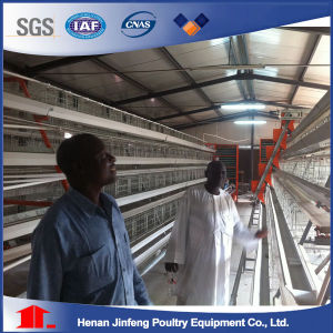Professional New Design Poultry Farm Layer Chicken Cages / Jaulas Pollos pictures & photos