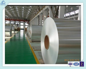 Aluminum/Aluminium Alloy Coil for Refrigerator/Fridge Shell