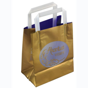 HDPE Printed Stand up Carrier Shopping Bags for Cosmetics (FLL-8373)