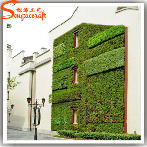 2015 Hot Sale Landscaping Artificial Grass Plant Wall pictures & photos