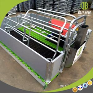 Hot Sale Classic Farrowing Crate Suitable for All The Pig Farms pictures & photos