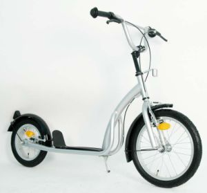 Steel Frame Foot Scooter (PB1612A) pictures & photos