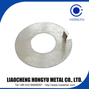 Stainless Steel 304 Flat Washer/Spring Washer/Square Washer