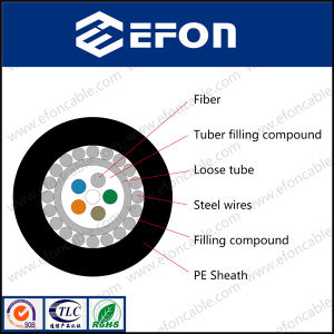 Single Mode 2core Steel Wires Optic Fiber Cable (GYXTY)