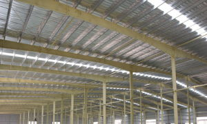Steel Structure Plants