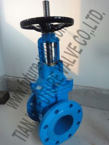 Bs5163 Pn16 Rising Stem Resilient Seated Gate Valve (Z41X-16)