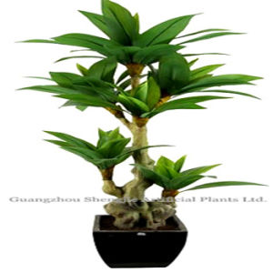 Artificial Plant Bonsai /Artificial Dracaena Fragrans