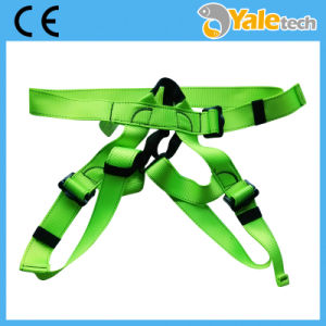 Industrial Safety Harness pictures & photos