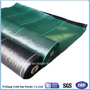 PP Woven Ground Cover/Weed Mat /Weed Barrier Professional Supplier pictures & photos
