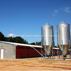 Farm Equipment for Broiler with Steel Structure Livestock House Construction pictures & photos