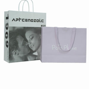 Printed Paper Gift Shopping Bag for Packing pictures & photos