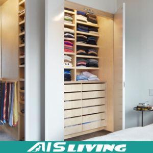 American Project Bedroom Wardrobe Closet Designs (AIS W038)