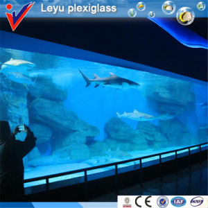Large Acrylic Panorama Window for Underwater World