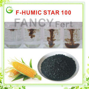 Humic Acid Soluble Fertilizer Potassium Humate pictures & photos