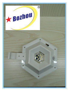 Solar Bright Waterproof Wall Light pictures & photos