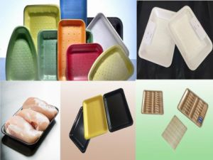 OEM Accept Wholesale Disposable Plastic Serving Tray Frozen Food Packaging pictures & photos