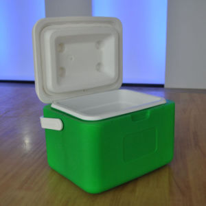 5L Ice Cooler Box for Outdoor Fishing with Handle (HWC-W5)