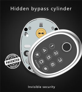 Kaadas New Product The Best Smart Lock in The World M9 Mini Smart Lock with  Bluetooth