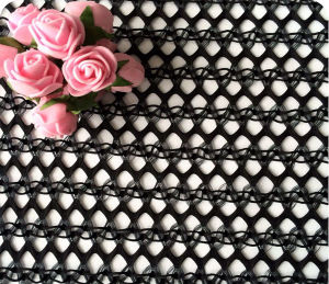 Lace Fabric for Marriage Gauze, Dress, Underwear pictures & photos