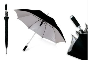 Double Canopy Straight Umbrella (BR-ST-127) pictures & photos