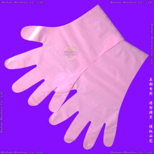 Disposable Plastic Gloves pictures & photos