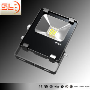 Dob New Technology 15W LED Floodlight with CE pictures & photos