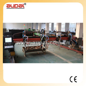High Precision Gantry Type CNC Flame&Plasma Cutting Machine (AUPAL-3000;)