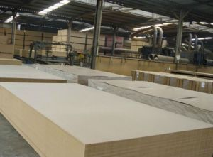Raw MDF Board Thickness 2-30mm pictures & photos