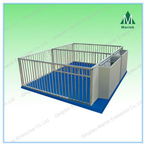 Special Design Factory Made Pig Gestation Crate pictures & photos