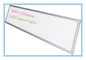 1X4 LED Panel Light 300X1200mm 40W 100lm/W pictures & photos