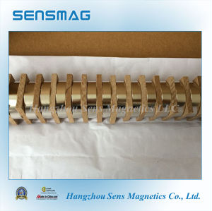 Powerful Big Ring Permanet NdFeB Magnet for Motor, Clutche, Coupling pictures & photos