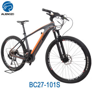 Carbon Fiber Bikes >> Carbon Fiber Alienozo 500w Electric Bike With Hidden Battery