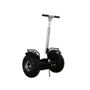 China Self Balancing Electric Unicycle Windgoo 2 Wheel Scooters Scooter