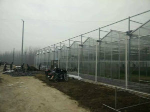 Large Size Agricultural Plastic Greenhouse pictures & photos