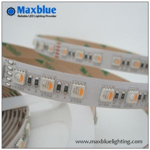 60/72/84/96 LEDs/M 4colors RGBW LED Strip Light pictures & photos