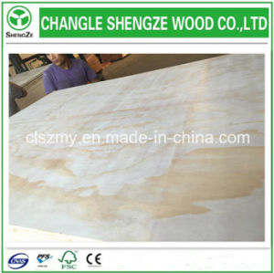 Hot Sell Furniture Grade Maple Plywood
