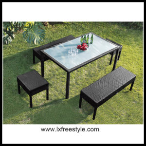 Professional Rattan Dining Set / Table and Chair Set (DS-203)