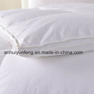 Box Sew Through 100%Goose Down White Comforter pictures & photos