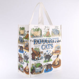 Laminated Tote Non Woven Shopping Bag with Customizd Size (YYNWB066)