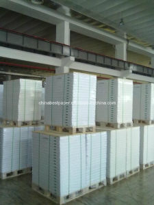 450g Triplex Paper Board for Middle East Market pictures & photos