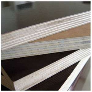 Best Quality Plywood with SD Embossed UV Decoration