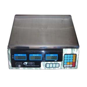 Electronic Computing Scale (ACS-626)
