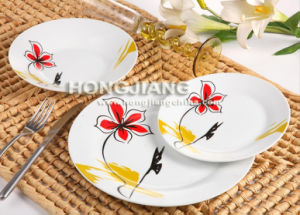 Dinnerware (HJ1004) pictures & photos