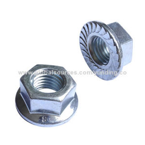 Hex Nuts with High Quality pictures & photos